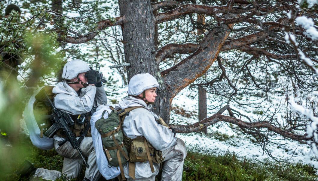 Soldater fra 2. bataljon i felt ved Porsangermoen.