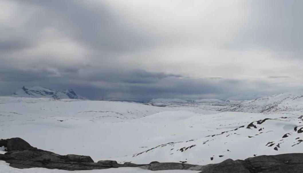 8. juni 1940 trakk de allierte seg ut av Narvikfjellene.