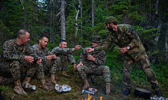 Norsk-amerikansk forsvarsministersamtale: Diskuterte sikkerhet i nordområdene