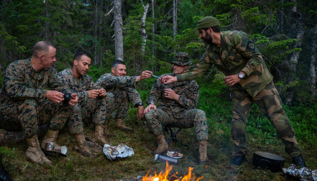 Stabssersjant i HV-12, Bachir El Hayek serverer kokt reinsdyr til U.S. Marines rotasjonsstyrkes kompaniledelse i Haltdalen i Trøndelag. Bildet er datert 23. juni.