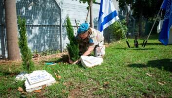 Det første Kristin Lund skal gjøre når hun gir seg som FN-sjef, er å felle noen trær