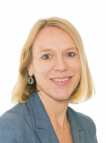 Anniken Huitfeldt, Arbeiderpartiet