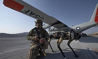Disse «robothundene» kan være en del av fremtidens krigføring