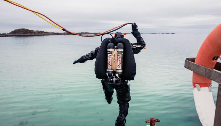 Sjøforsvarets personell må være i god form. Bilde fra et dykk fra KV Harstad i mai.