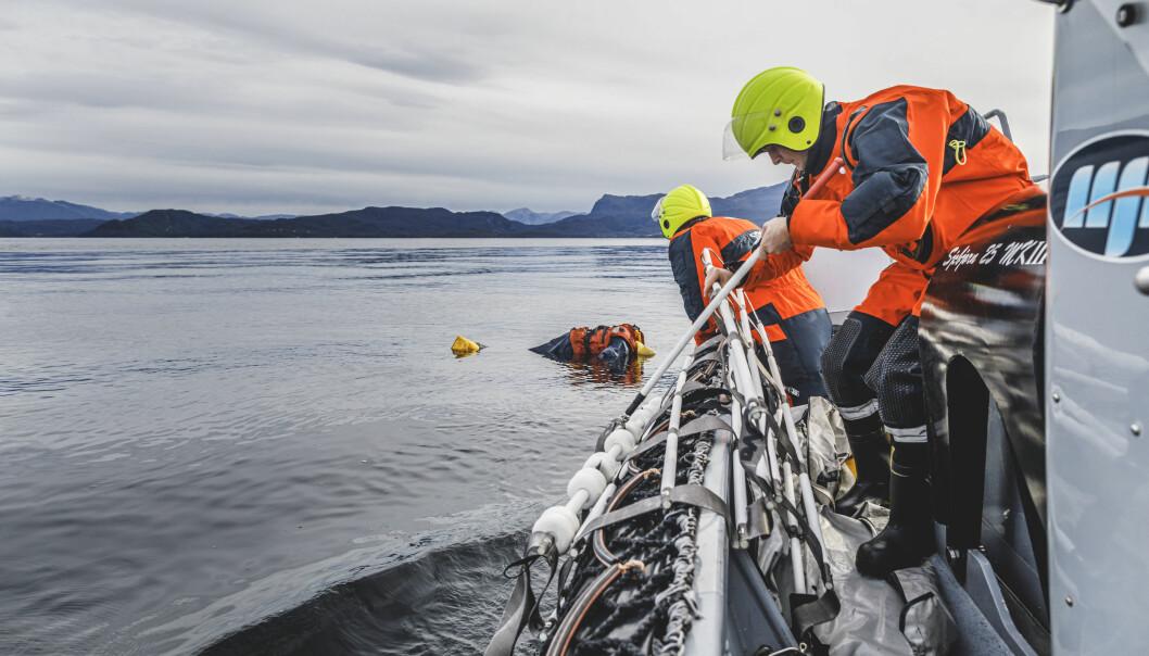 Regjeringen satser ikke nok på å oppbemanning av Forsvaret, mener Anniken Huitfeldt. Her ser besetningsmedlemmer om bord KNM Maud.