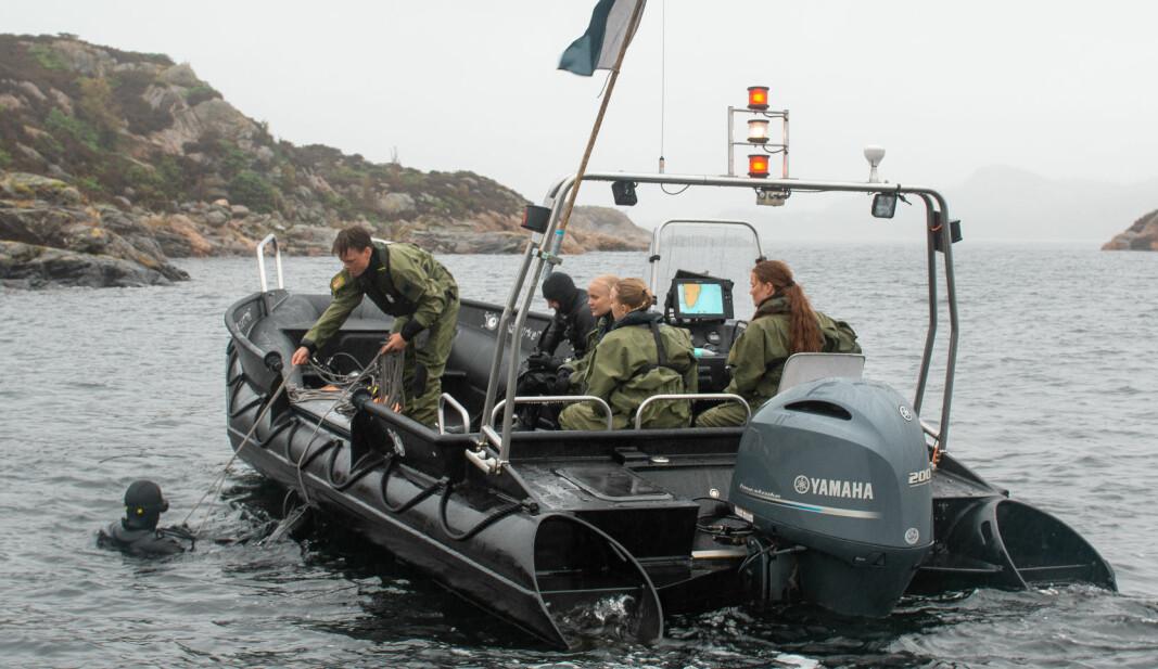 Primæroppgaven til båtoperatører er å ivareta sikkerheten til dykkere ved dykkeaktivitet.