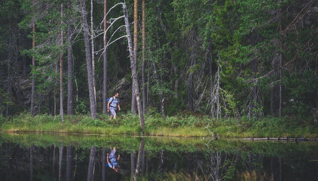 Kronprins Haakon gikk tre dagsmarsjer av ruten som er 120 kilometer lang.