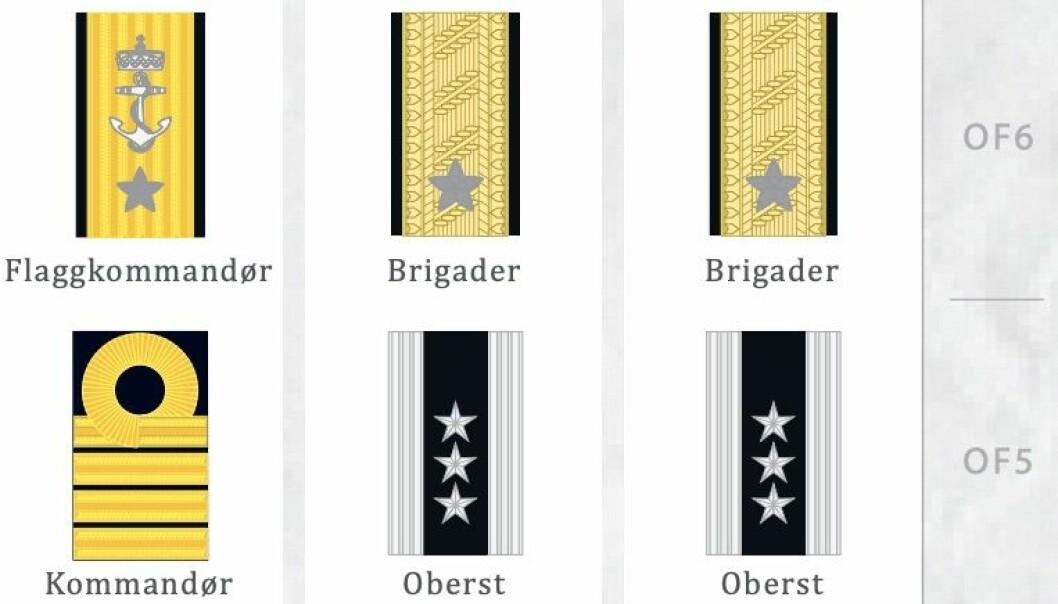 Dette er noen av gradene Forsvaret og Forsvarsdepartementet skal vurdere om kan gi plass for flere operative stillinger.