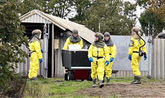 Mutert koronavirus hos dansk mink: Forsvaret og Hjemmeværnet settes inn