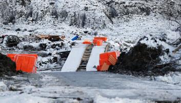 Broen ble fraktet tilbake til Rena natt til onsdag 6. januar.
