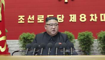 Vil øke Nord-Koreas forsvarsevne