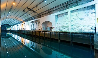 WilNor kjøper marinebasen Olavsvern