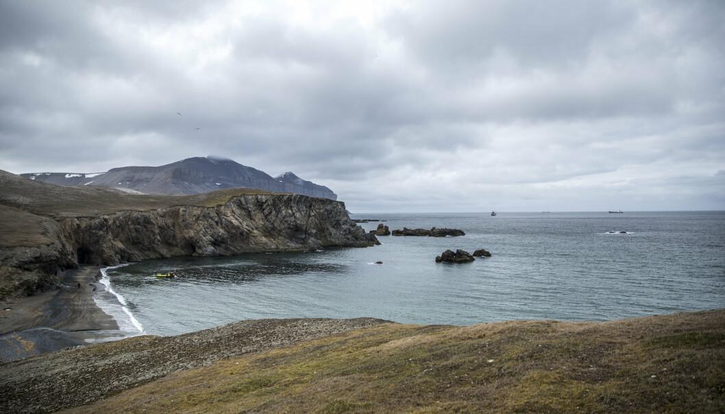 Bilde fra Bjørnøya i 2016 tatt i forbindelse med et tokt med KV Svalbard.