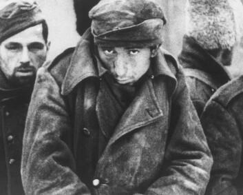 Russland kontakter overlevende fra Stalingrad for å etterforske «folkemord»