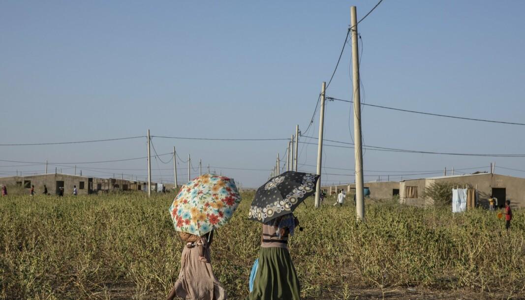 Røde kors melder om seksuelle overgrep i Tirgray-provinsen i Etiopia. Her ser vi flyktninger fra provinsen på vei til grensen mot Sudan.