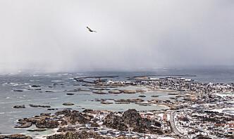 På Andøya er framtiden like usikker som været