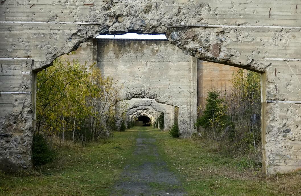 SKYTEBANE: I Trandumskogen ligger det blant annet en skytebane for stridsvogner, som ble bygget av tyskerne under krigen. Stedet er nå et fredet krigsminne.