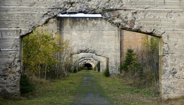 KRIGSMINNE: Trandumskogen er en av de mest kjente minnesmerker fra andre verdenskrig i Norge.