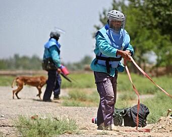 Minst ti mineryddere drept av Taliban i Afghanistan
