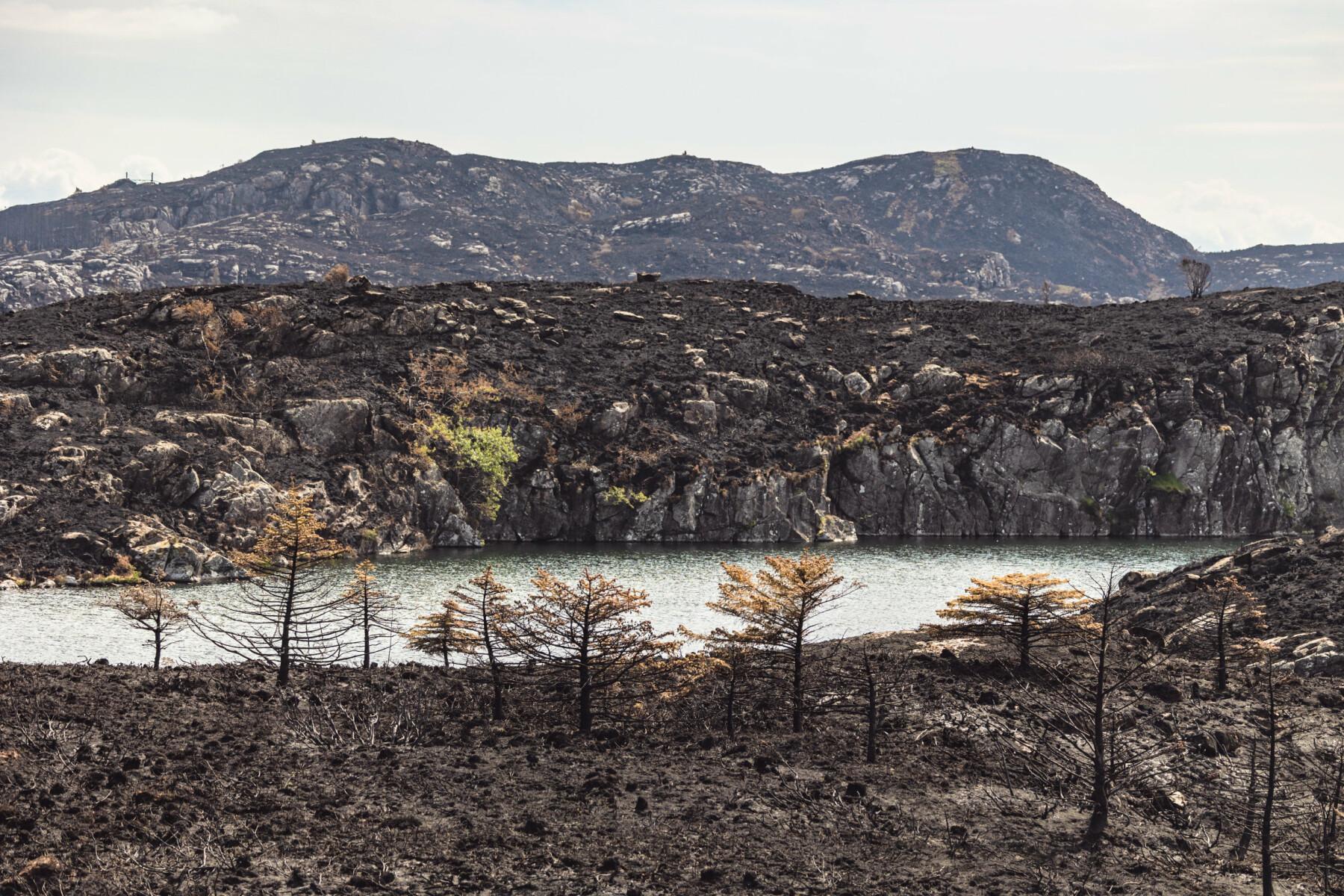 ØDE: Brannen la store områder øde bak seg før den ble stoppet.