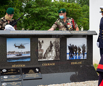 Militærhunder hedret med minnesmerke