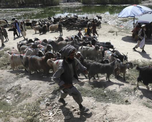 Rakettangrep mot Kabul