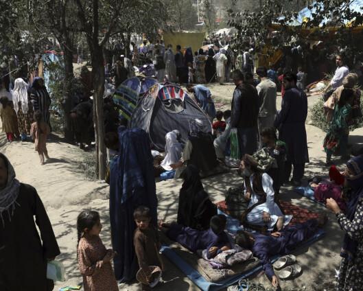 EU-ambassadører vil ha slutt på tvangsretur til Afghanistan