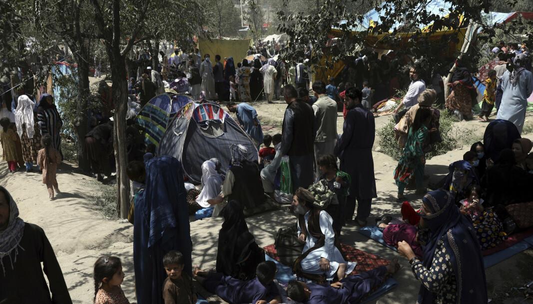 FLYKTER: Afghanere fra nordlige provinser har flyktet fra hjemmene sine, som følge av kamper mellom Taliban og afghanske sikkerhetsstyrker. Her i en offentlig park i Kabul.