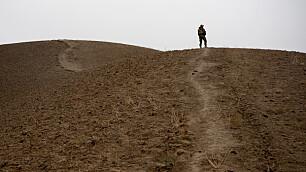 SIOPS om saken til veteranen Trym:– Det er fortsatt mye ugjort i veteranpolitikken