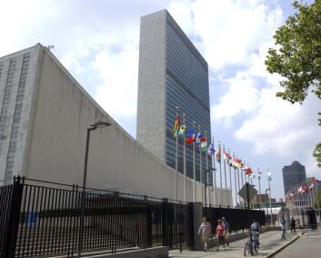 – Sikkerhetsrådets antagelser om Taliban er svært problematiske